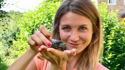neuneinhalb - das Reportermagazin für Kinder: Schutz für Schildkröten