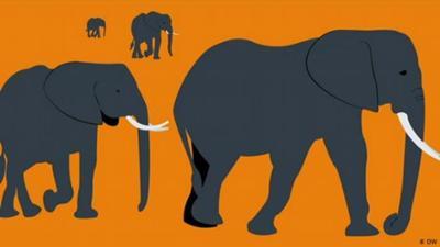 Global Ideas: Tiere auf Wanderschaft