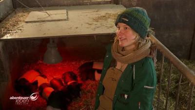 Abenteuer Leben: Montag: Die vergessene Schweinerasse