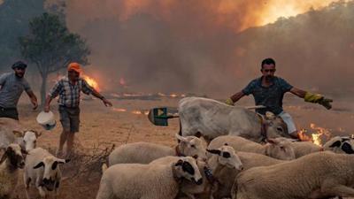 News & Trends: Lebensgefährliche Hitze: In diesen Urlaubsländern wird es bis zu 46 Grad heiß