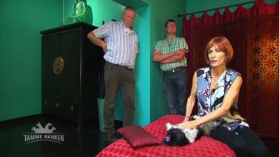 Tamme Hanken: Massagetermin im Hunde-Luxushotel