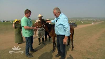 Tamme Hanken: Schwer verkrampftes Pferd in der Mongolei