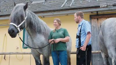 """Bussi Fussi: Best-of: Ponyhof"""""""