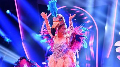 The Masked Singer: Der Flamingo singt 'All The Lovers' von Kylie Minogue
