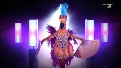 """The Masked Singer: Der Flamingo: """"Ich bin ausgeflogen - verträumt aber zielstrebig"""