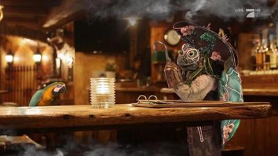 """The Masked Singer: Die Schildkröte: """"Wir sind auf Goldkurs"""""""