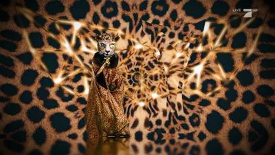 """The Masked Singer: Insider: """"Der Leopard hat sein Ziel vor Augen"""""""