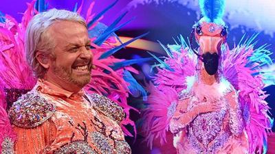 """The Masked Singer: """"The Masked Singer"""": Ross Antony bricht als Flamingo in Tränen"""