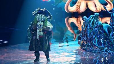 The Masked Singer: Alle Auftritte der Schildkröte