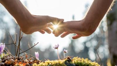 odysso - Wissen im SWR: Geheimnisvolle Selbstheilung