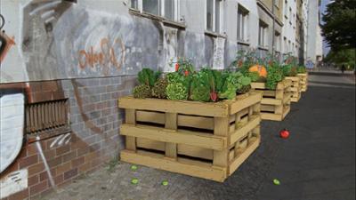 Die Maus wird 50: So funktioniert Urban Gardening