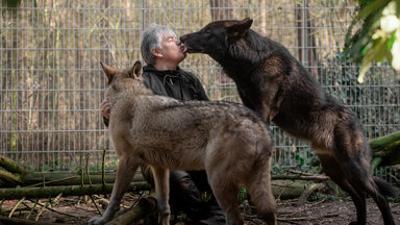 37 Grad: Der mit dem Wolf lebt