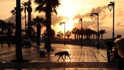 3sat Kulturdoku: Die letzten Tage von Beirut