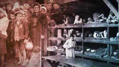 Der deutsche Abgrund: Völkermord 1942-1944