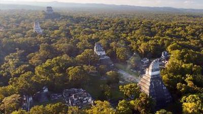 Die Machtzentren der Maya: Tikal