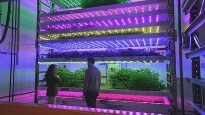 Genial konstruiert: Landwirtschaft & Technik
