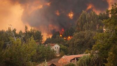 planet e.: Wenn die Wälder brennen